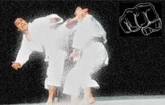 karate san athlima